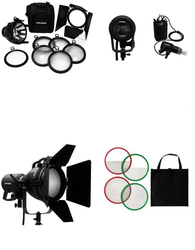 Profoto Pro Daylight 800Air Package (DL,01)